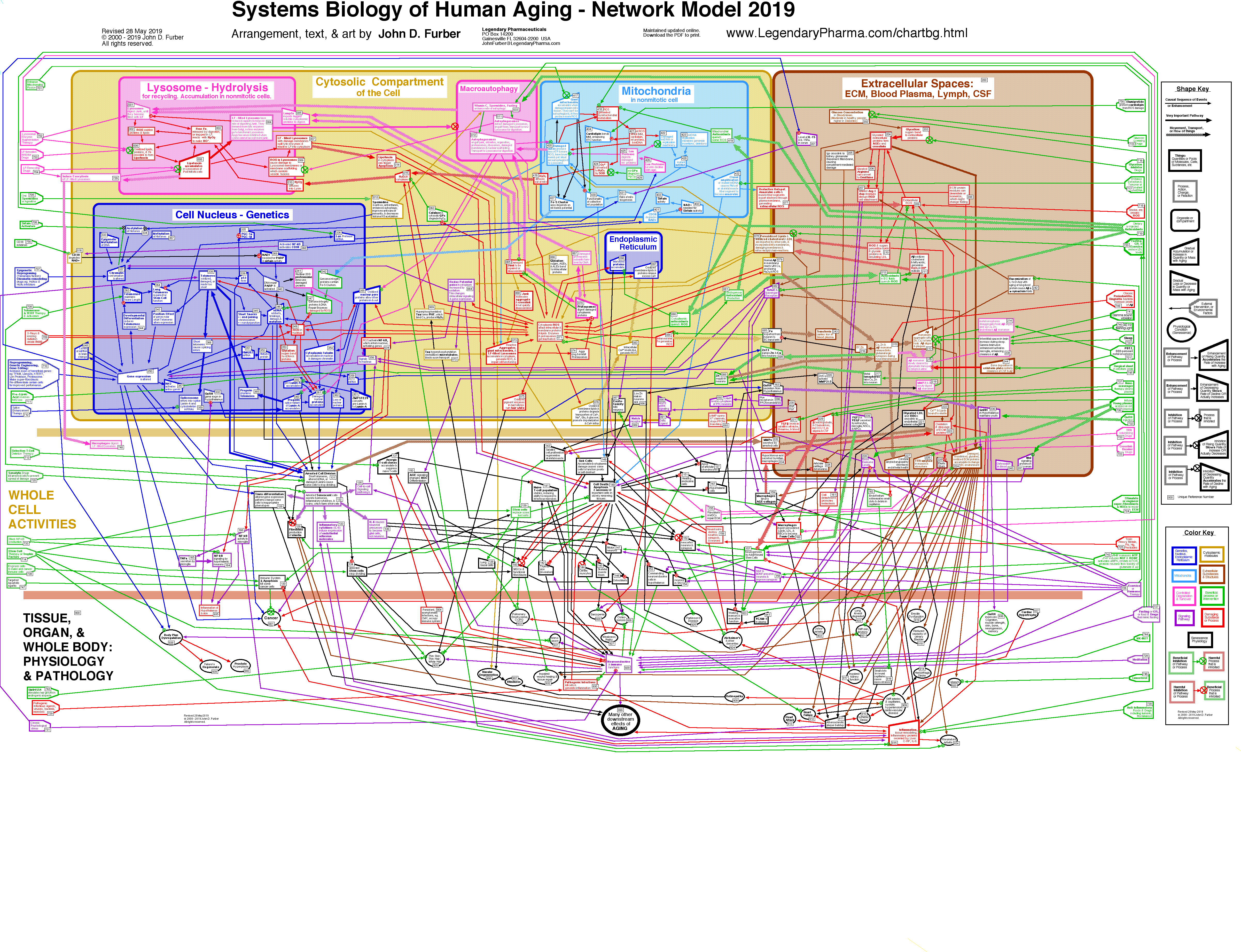 Large Network Diagram. PNG File. If your iPhone or iPad is unable to display the PNG, then go down the page and load the PDF file furberchart.pdf